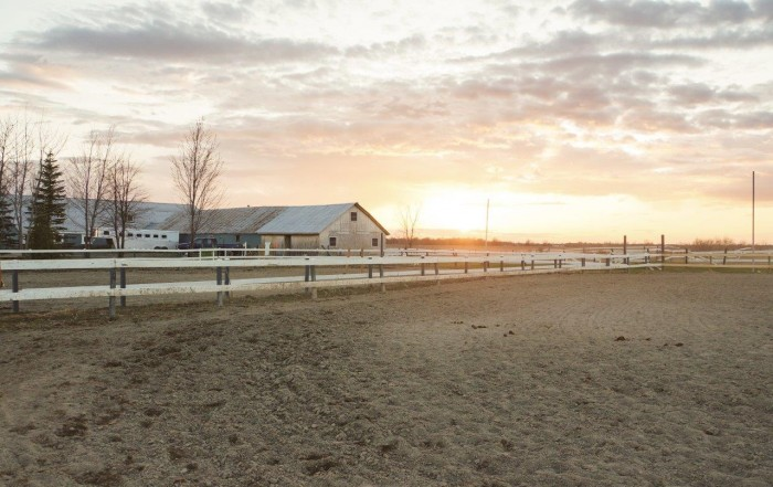beautiful equestrian property with large fields